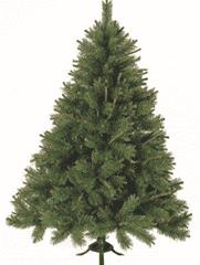 Новогодние елки 16